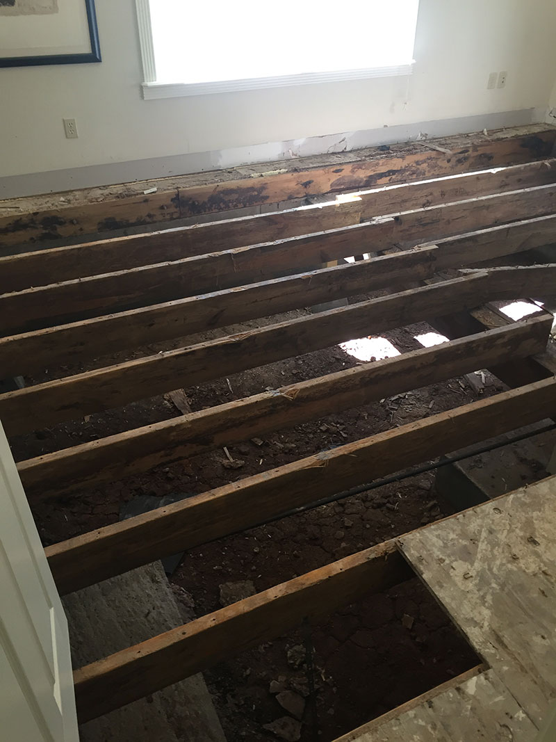 Water Damage Hardwoods